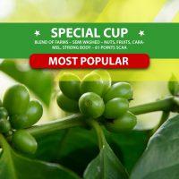 Special Cup
